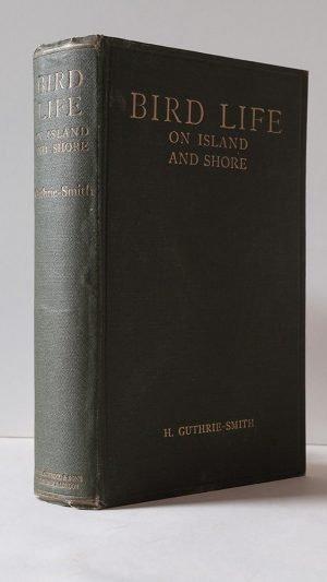 Bird Life on Island and Shore